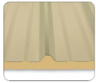 RWP II Roof/Wall Panel
